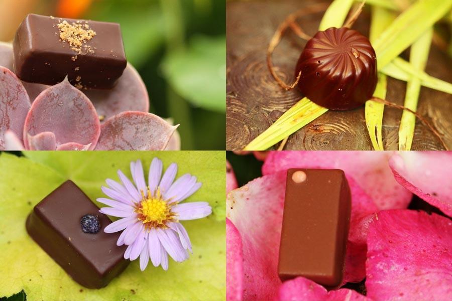 Chocolats Didier Fourreau